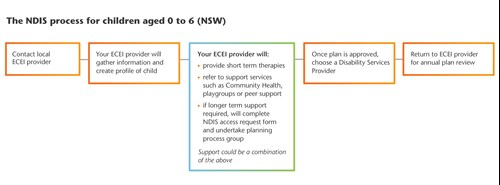 NDIS process diagram